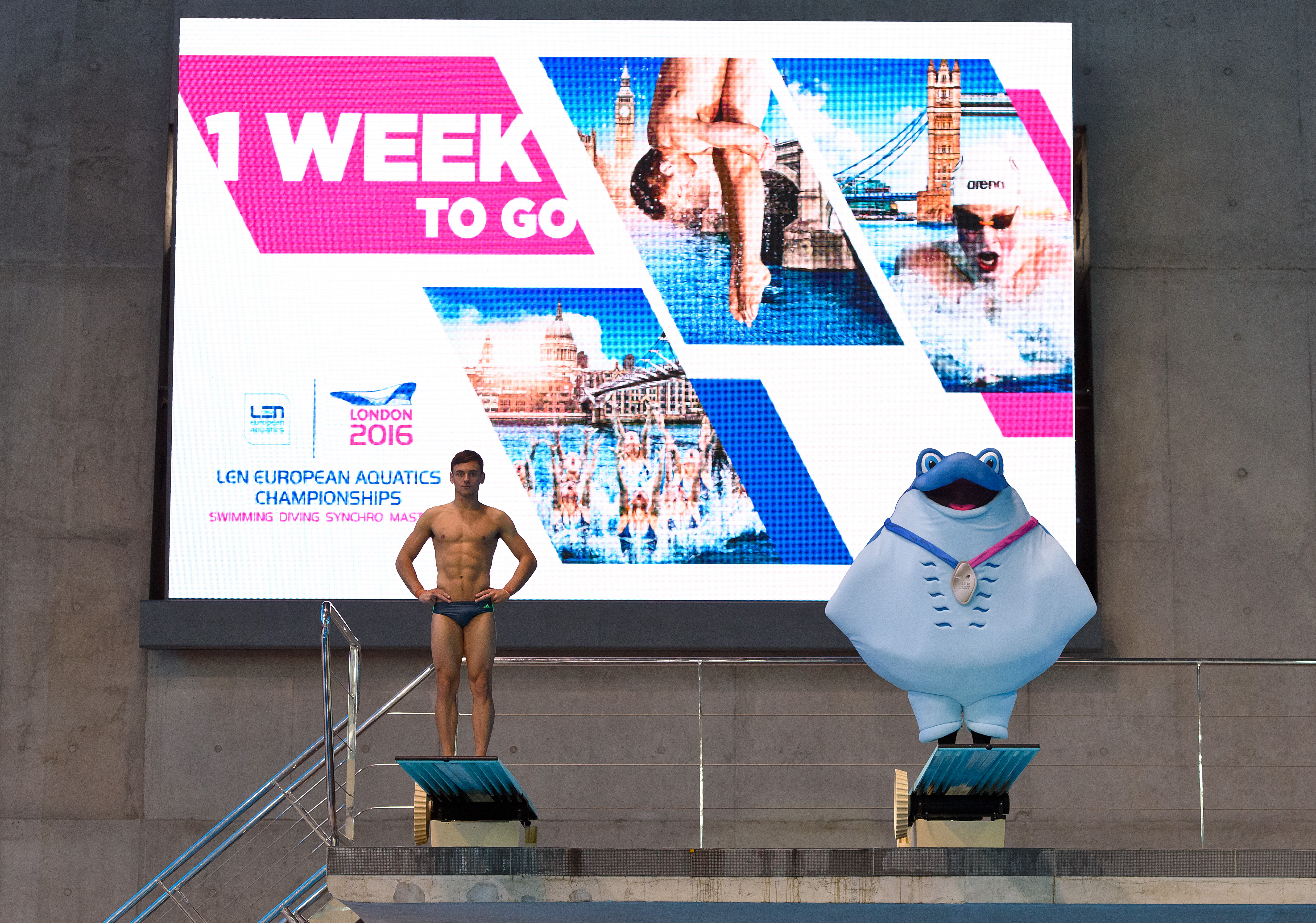 """""""LONDON, ENGLAND - MAY 02: Diver Tom Daley poses with mascot Ray during a media event at the London Aquatics Centre onÊMay 2, 2016 in London, England. The London 2016 LEN European Aquatics Championships start on the 9th May 2016. (Photo by Ben A. Pruchnie/Getty Images for London 2016 LEN European Aquatics Championship)"""""""